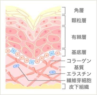 イオン導入前の図