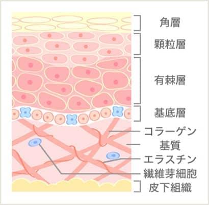 イオン導入後の図